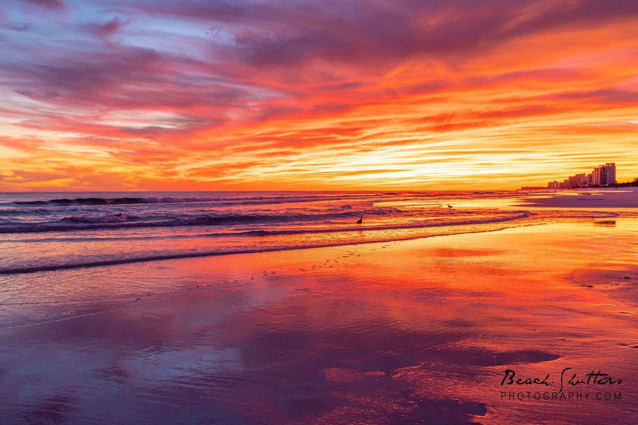 Orange beach Al photographers