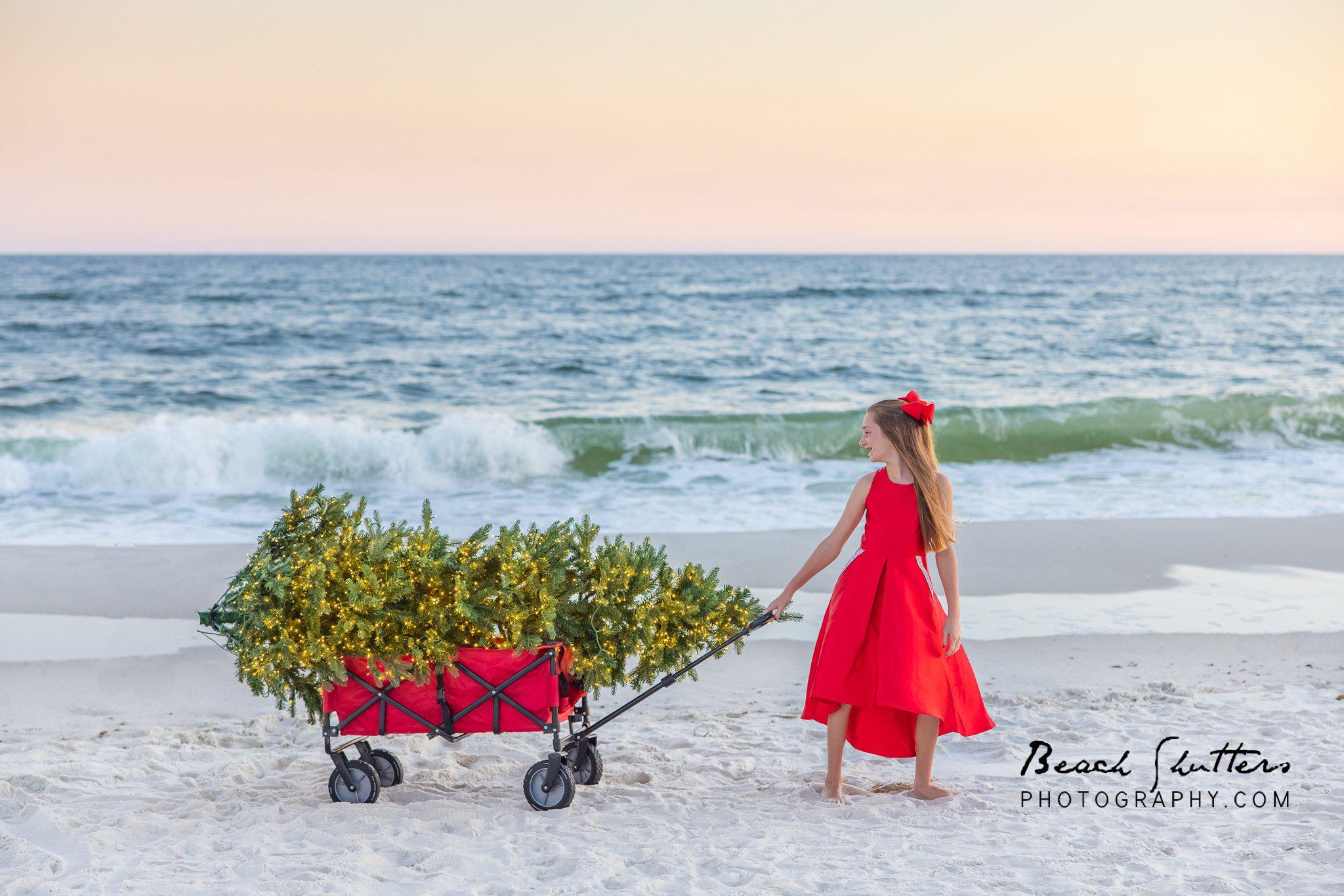 Christmas tree photos in Orange Beach