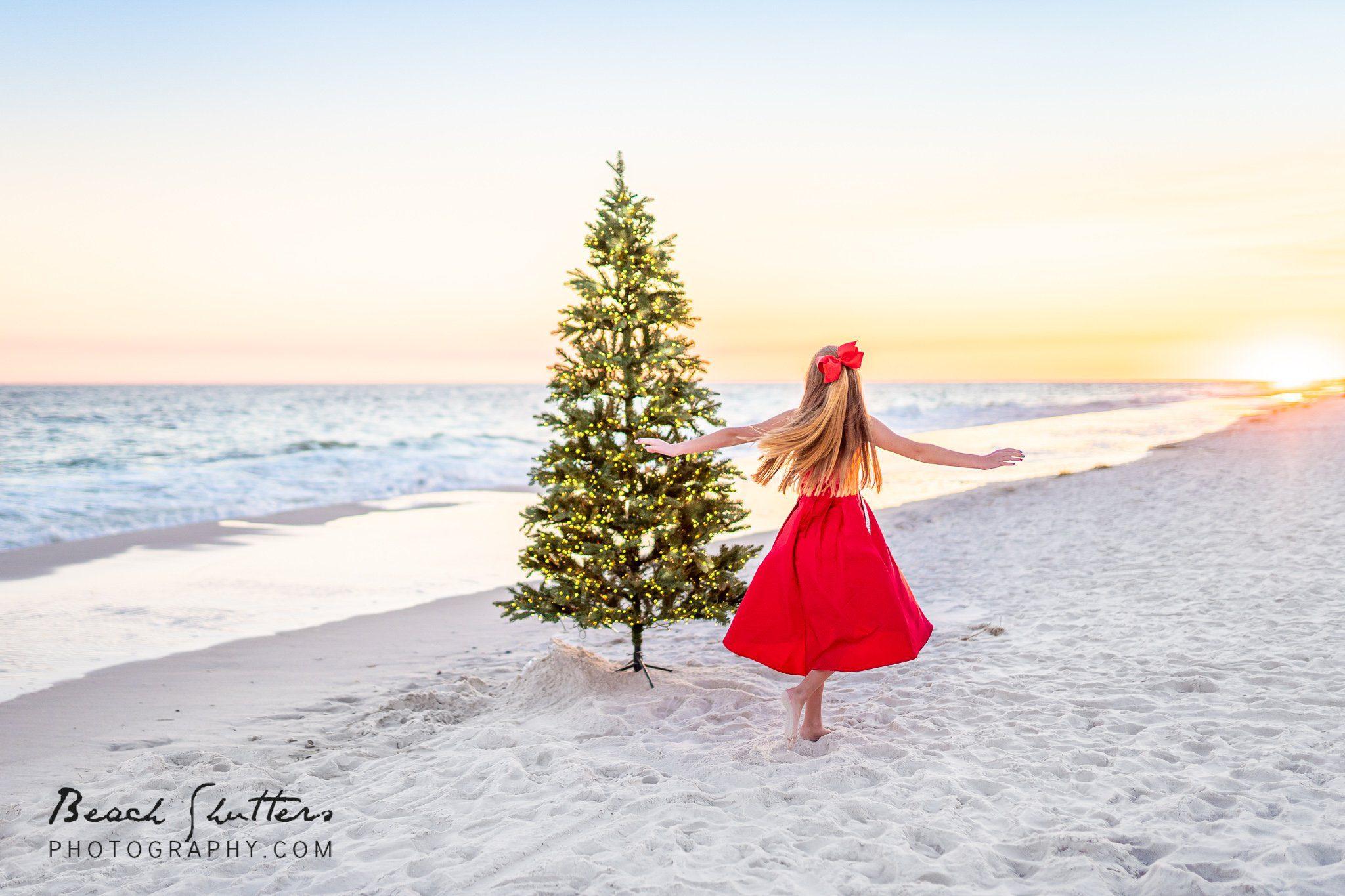 Tree at the beach.